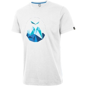 Koszulka Salewa GET VERTICAL CO M S/S TEE 25763-0010, Salewa